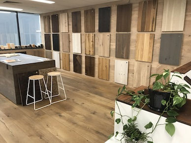 Showroom_Alexandria Interior
